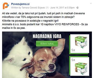 Povezujemo.si - Facebook paket oglaševanja