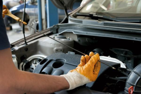 Info Avto, trgovina z avtomobili in lahkimi motornimi vozili