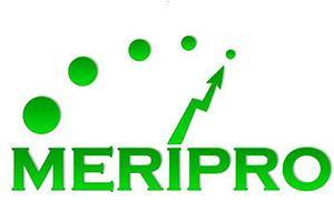 Meripro, meritve, projektiranje in inženiring v elektroniki