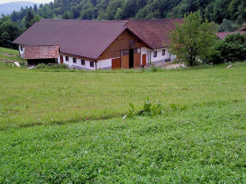Ekološka kmetija Levičnik