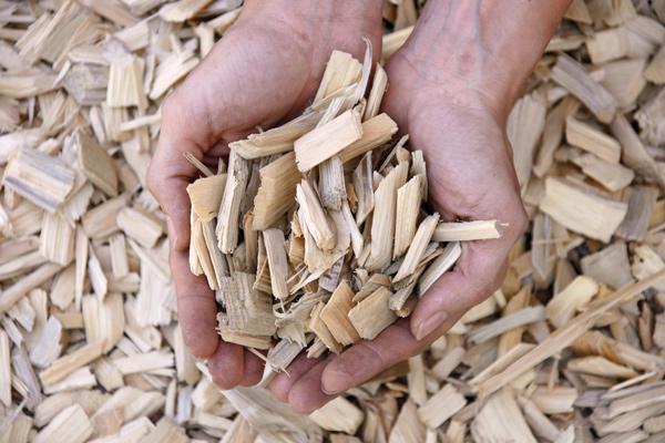 Lesko, biomasa in žagarstvo, Tomo Kos s.p.