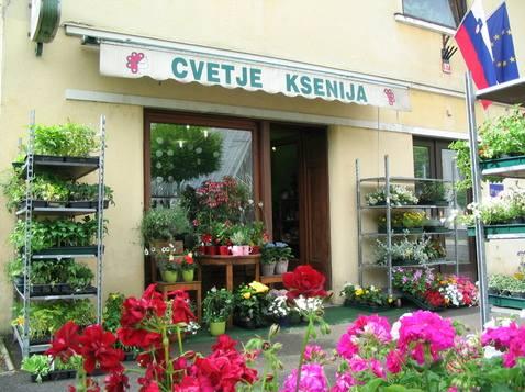 Vrtnarstvo in cvetličarstvo Cvetje Ksenija Domžale