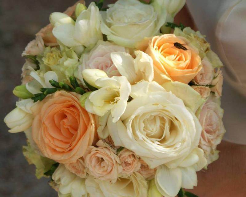 Darilnica in cvetličarna Rodanta