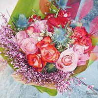 Cvetje Romina, cvetličarna Tolmin, Romina Colnarič s.p.
