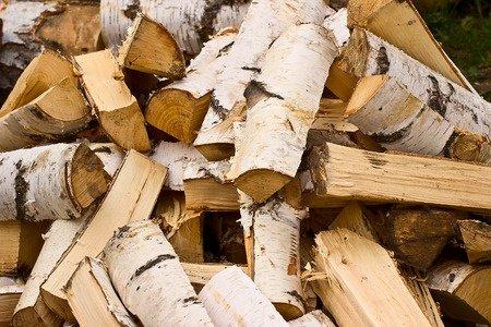 Gozdarstvo Tadej Veselič