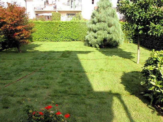 Park Art, vrtnarske storitve, Iztok Budja s.p.