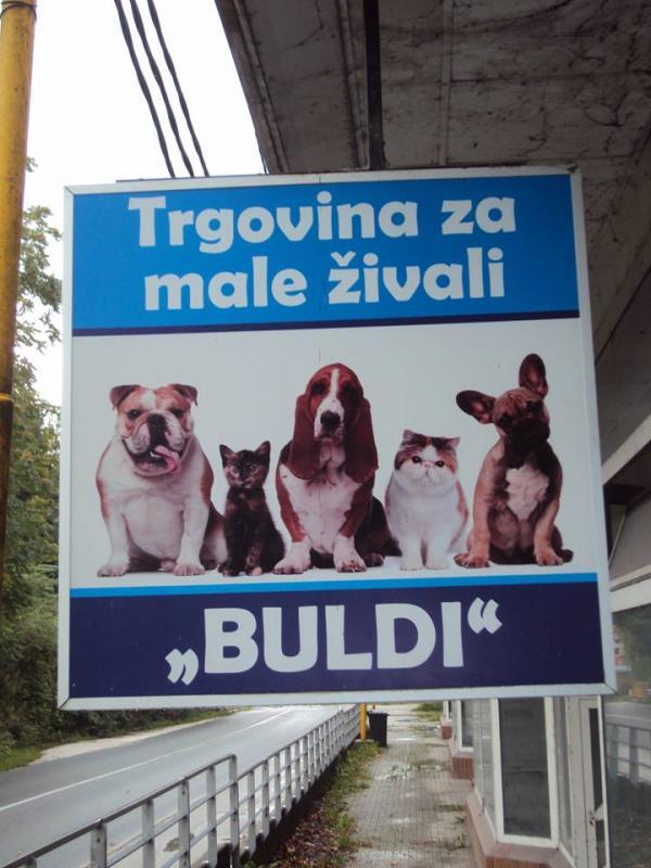 Trgovina Buldi, gurmanska hrana za pse, Anita Karničnik s.p.