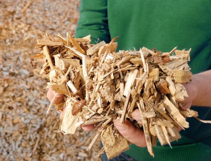 Prodaja in izdelava lesnih sekancev, Anton Spital, Šoštanj