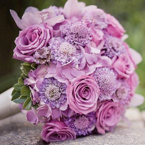 Cvetličarna D&M Kobarid