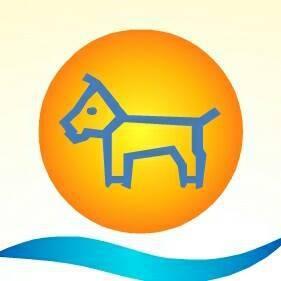 Happy pet, spletna trgovina za male živali