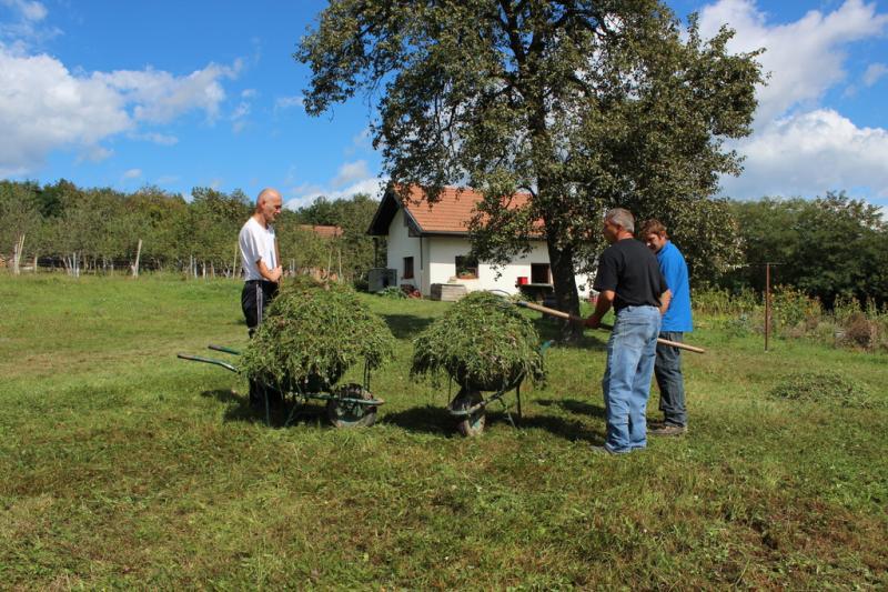 Ekološka trgovina, Darko Jakomin s.p., Pobegi
