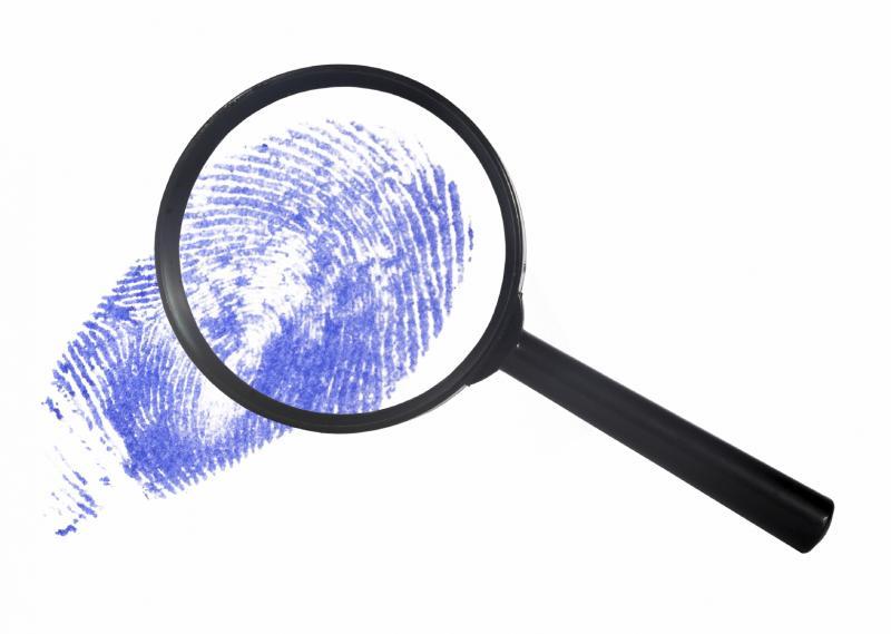 Detektiv vse najde, poizvedovalna dejavnost, Polona Lavtar s.p.