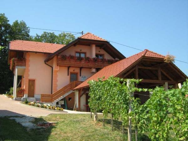Turistična kmetija Črnič