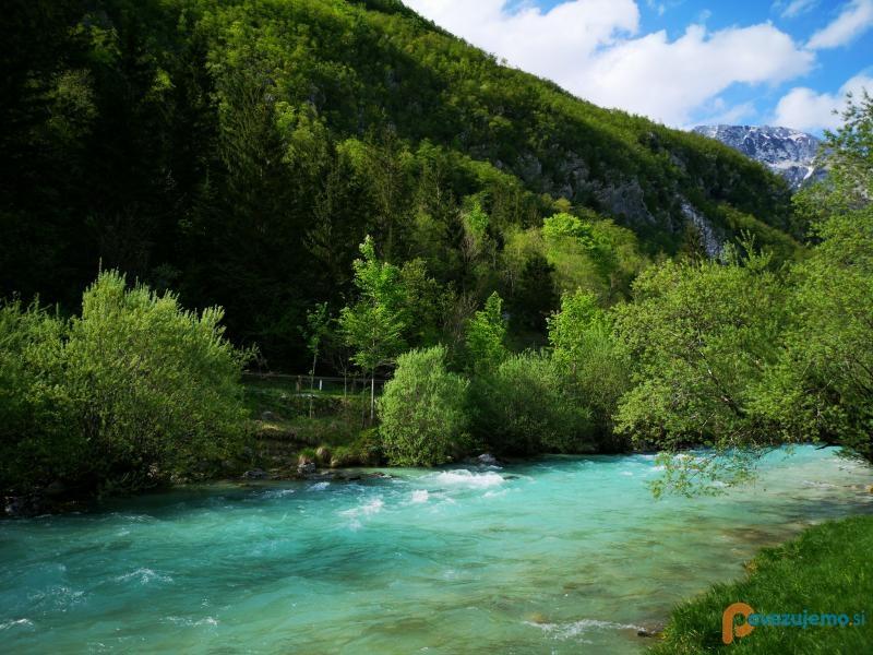 Turistična kmetija Jelinčič