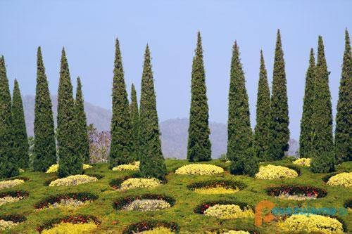 Vrtnarija Bilban