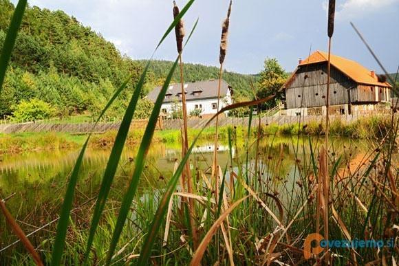 Eko kmetija Mikl