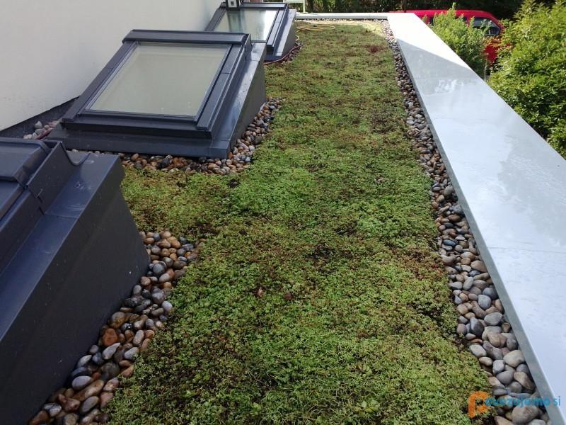 Izolacija Kern Hidroizolacija Strehe Zelene Strehe