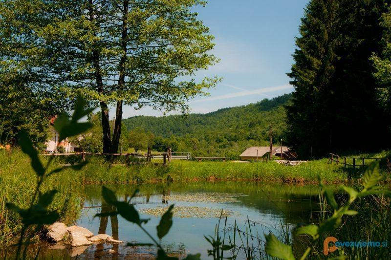 Ekološka turistična kmetija Mlinar