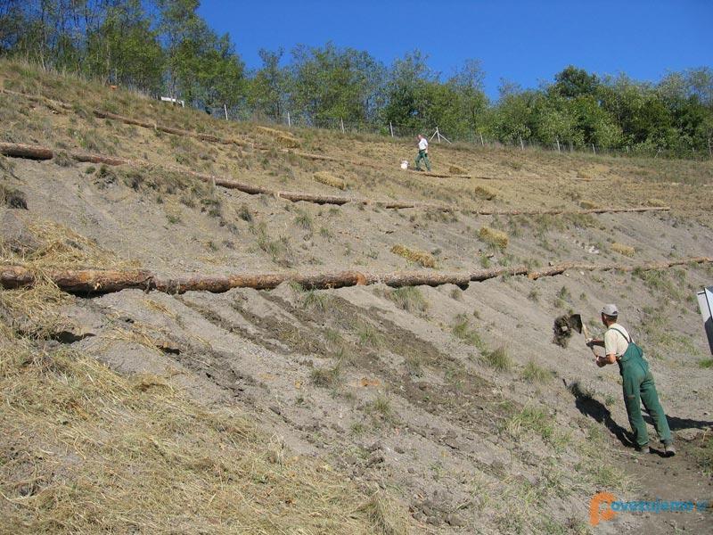 Max Les d.o.o., gozdarstvo in gradbeništvo
