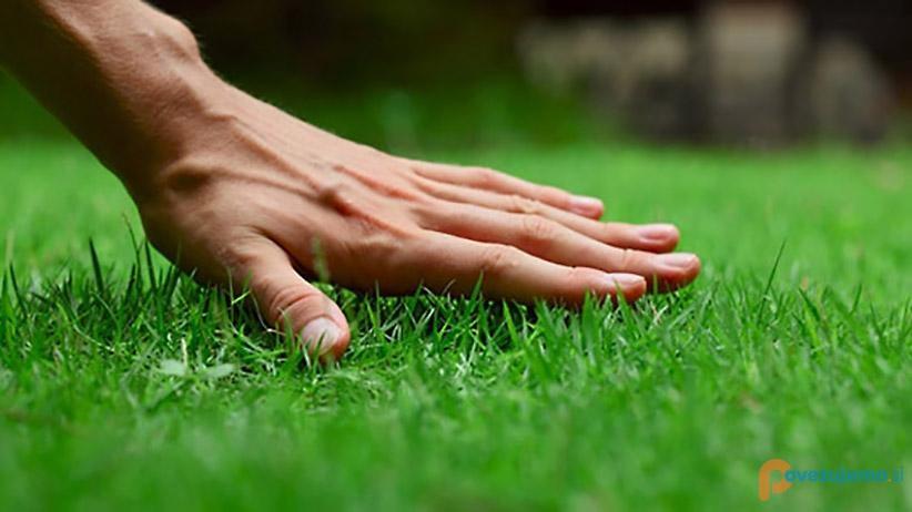 Drvarji, vzdrževanje okolice in druge storitve d.o.o.