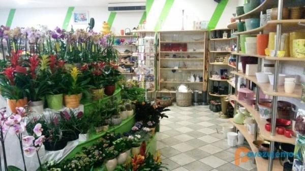 Vrtnarstvo in cvtličarstvo VCT