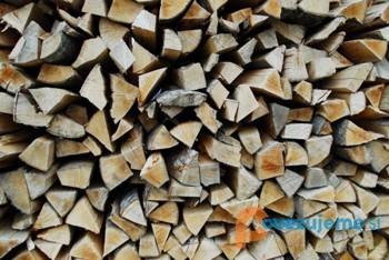Izdelava lesene embalaže in razrez lesa, Mitja Potočnik