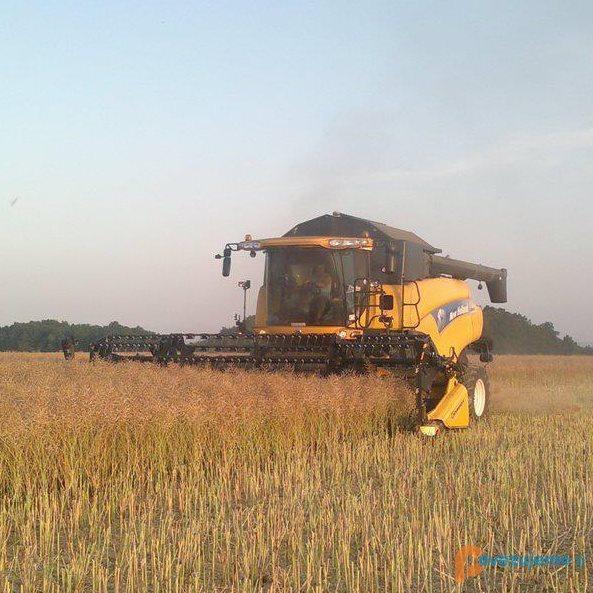Kmetija Cigüt d.o.o.