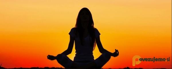 Poučevanje joge Erika Milost s.p.