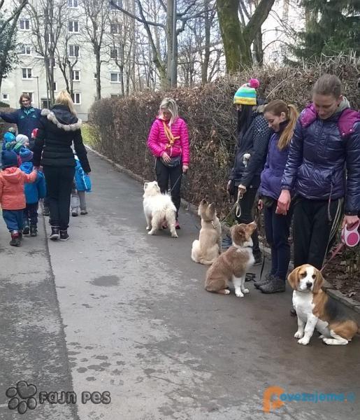 Fajn pes, šolanje in oskrba psov