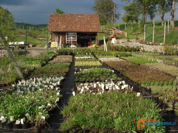 vrtnarstvo-kanofleur