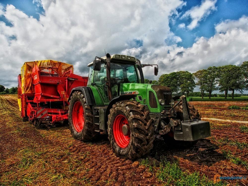 Strokovno svetovanje in cenitve v kmetijstvu, Anemari Ramšak s.p.