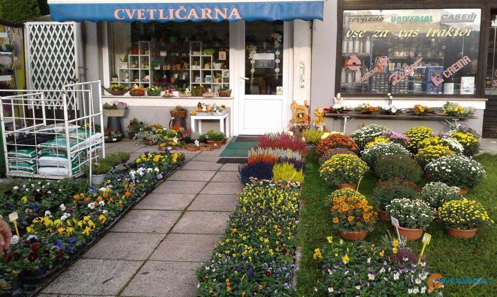 Cvetličarna Iris Podčetrtek, Maja Sinkovič s.p.