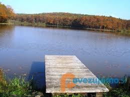 Kmetija Camplin - Bukovniško jezero